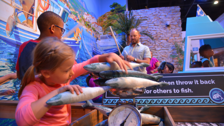 Fishing, Take Me There, Greece