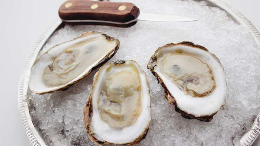 Blupoint Oysters