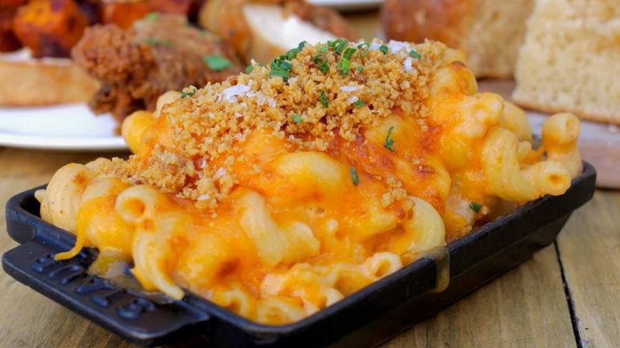 Root & Bone macaroni